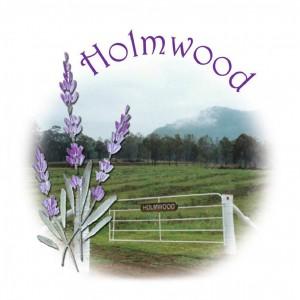 holmwood_logo